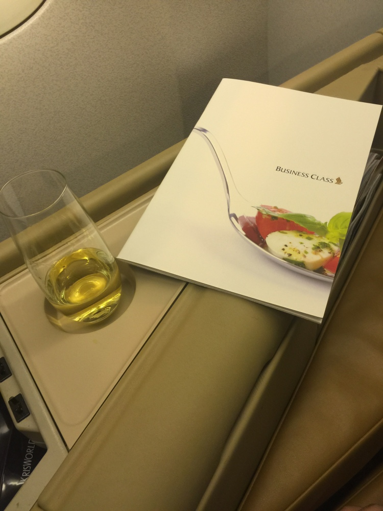 2015 Europe Trip: Singapore Airlines 392 777-200 SIN - IST Business Class (5/6)